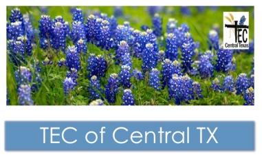 TEC of Central Texas Banner 0417
